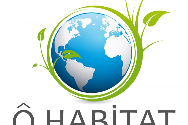 Ô HABITAT : Opérateur Global de la Rénovation Energétique Toulousain